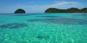 美人鱼岛 – 浮潜/潜水