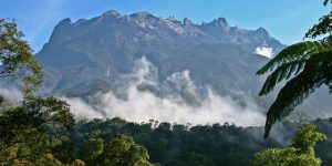 2 Days 1 Night Kinabalu Park & Poring Hot Spring Tour